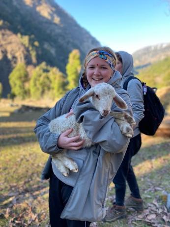 Friendly Lambs
